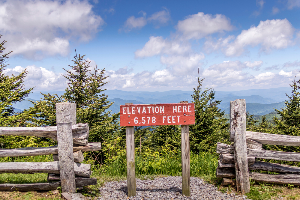 A sign post on the side of a mountain that reads 'Elevation Here: 6,578 Feet'. It is a red sign with white letters. Next to it is a wooden fence and behind it you can see trees, tall grass, and the mountains in the distance.