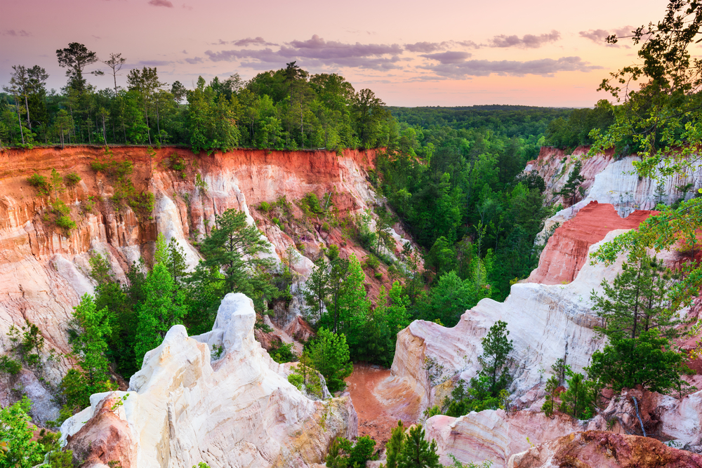 A view of a canyon made of white red and orange rocks. The rock formations are covered in green trees and in the distance you can see trees for miles. It is sunset and one of the best things to do in Georgia.