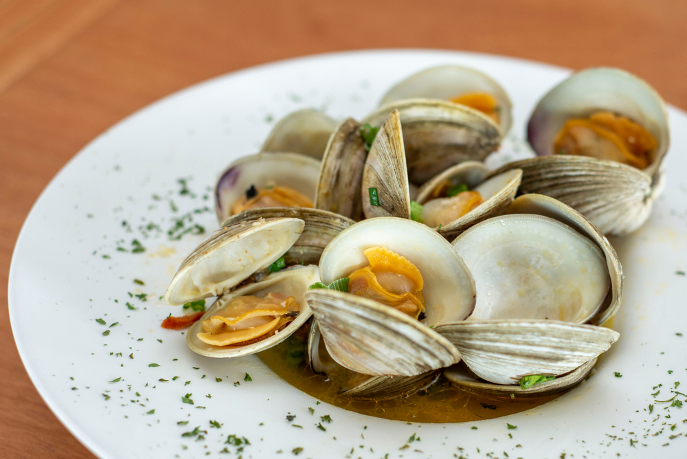 A white plate of little neck clams with chives and broth