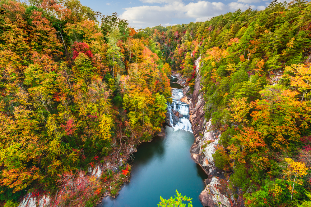 Fall foliage surrounding the Tallulah Falls in Georgia. The leaves on the trees are green, yellow, orange, and red. The water from the falls is very blue.