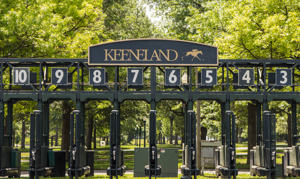 starting gate for horse racing  at Keenland