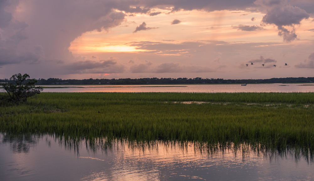 An afternoon at Pinckney Island National Wildlife Refuge one of the best things to do in south carolina