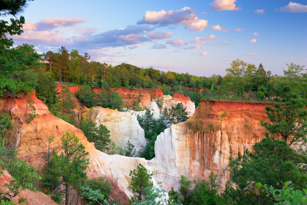 dramatic white and orange canyon with green grass and trees on top of the ledges