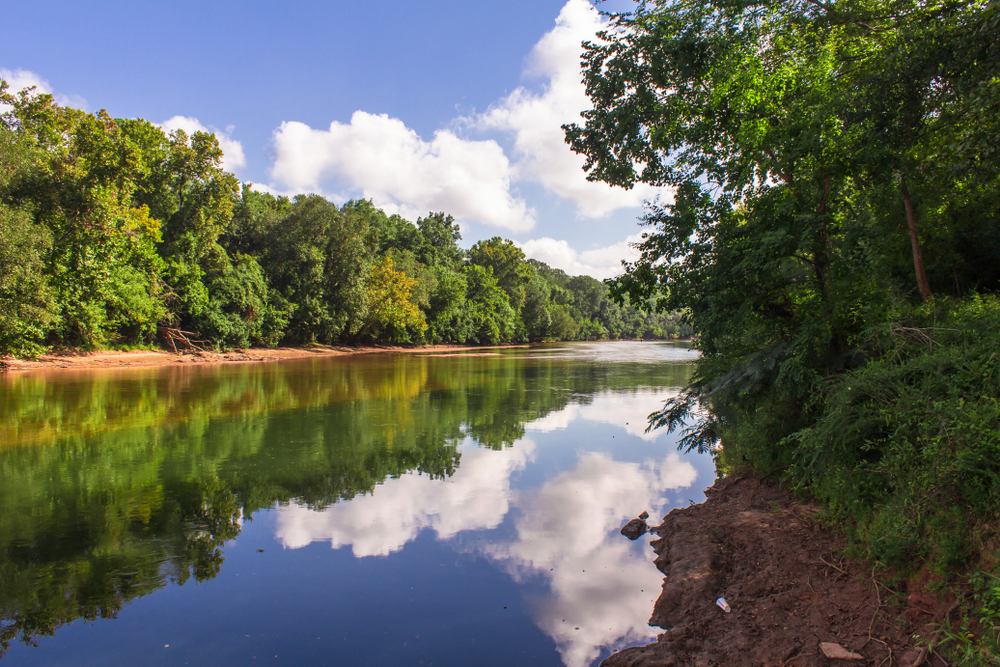 Ocmulgee River on a sunny day.