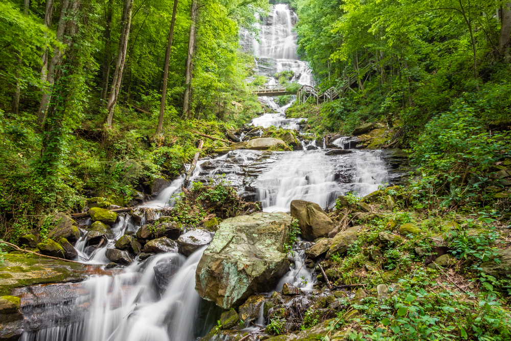 Cascading water in the forest at Amicalola Falls.