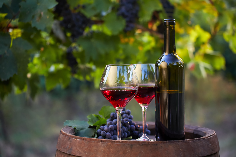 Two glasses of wine with a bottle and grapes in a vineyard.