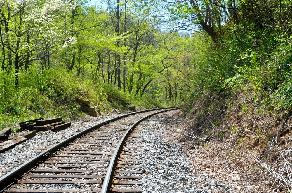 Railroad tracks along the Blue Ridge Scenic Railway