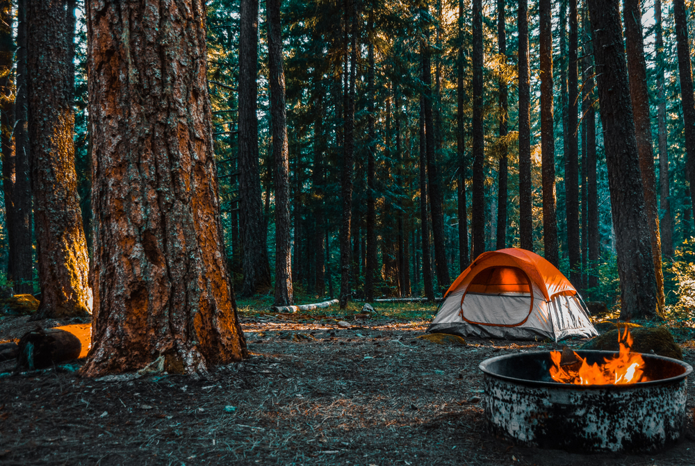 A photo of an orange and white tent in the woods with a campfire lit at Shenandoah National Park.