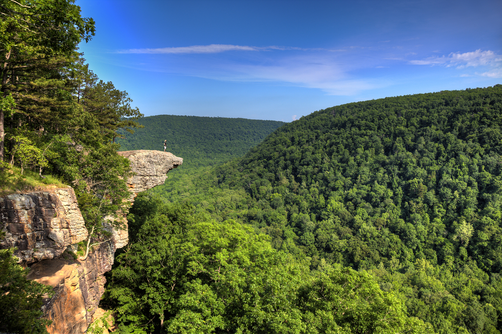 A picture of a hiker standing on the protruding Hawksbill Crag that overlooks the green forested hills.