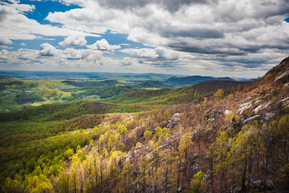 A picture of green valleys and forest covering the hills and mountains on a cloudy day as seen from Old Rag Mountain in Shenandoah National Park.
