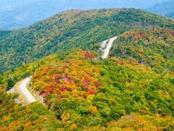 A picture of a road on the rolling hills of Shenandoah National Park in the fall.