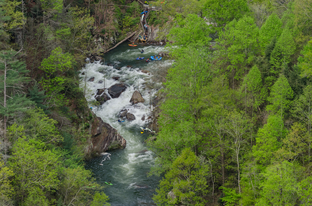 Kayakers on the Toccoa River, one of the best things to do near Blue Ridge.