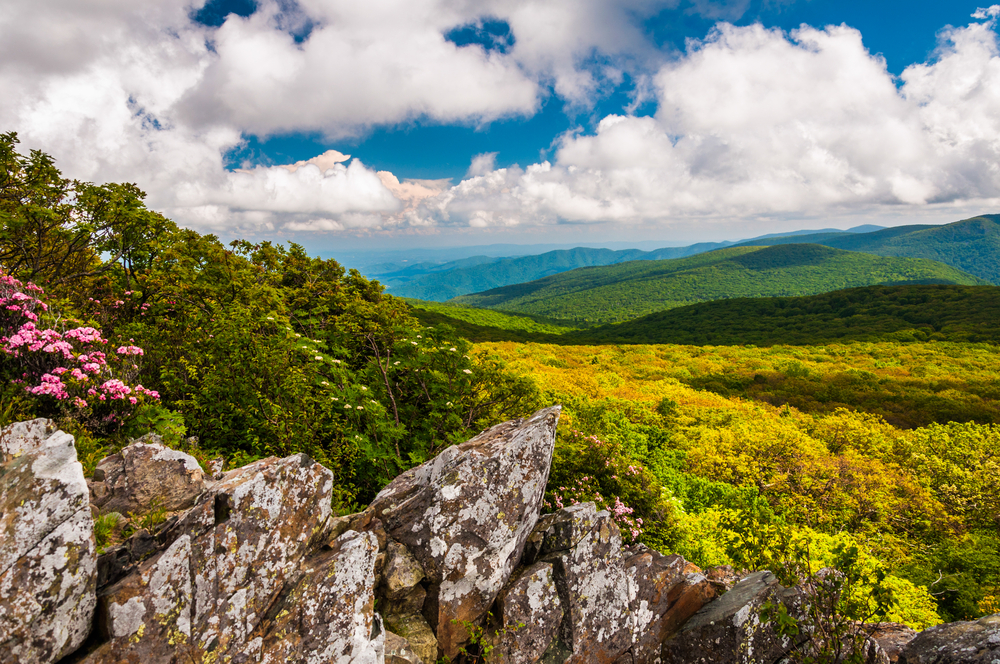 View overlooking green hills covered in trees beneath a blue and cloudy sky in Shenandoah national park one of the best national parks in Virginia