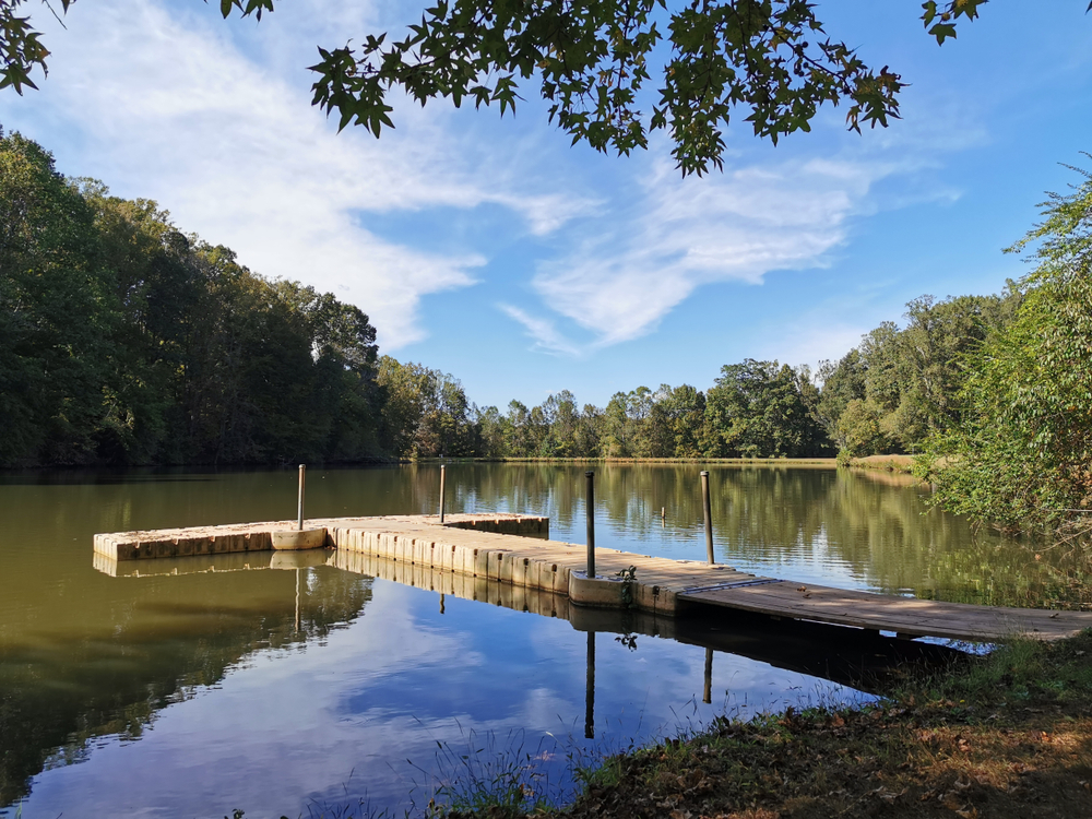 a small dock on a pond surrounded by trees one of the best things to do in winston salem north carolina