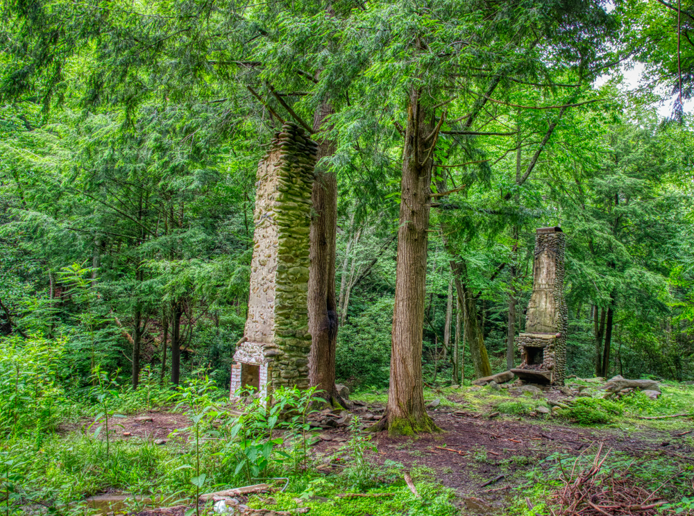 Chimneys standing alone in a green forest in the Elkmont Ghost Town.
