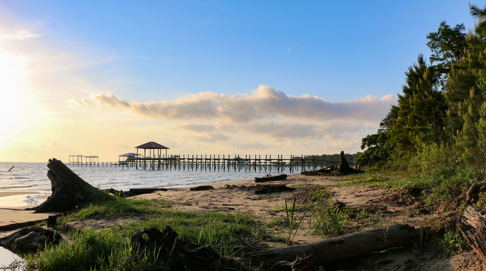 the beautiful coastline of the mobile bay