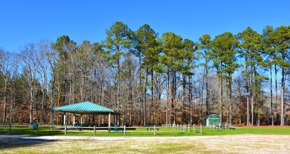 Photo of a picnic pavilion surrounded by tall trees and bright green grass at Arnette Park, one of the best things to do in Fayetteville North Carolina.