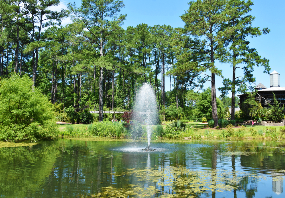 Photo of a fountain in a pond surrounded by tall trees at Cape fear Botanical Garden, one of the best things to do in Fayetteville North Carolina