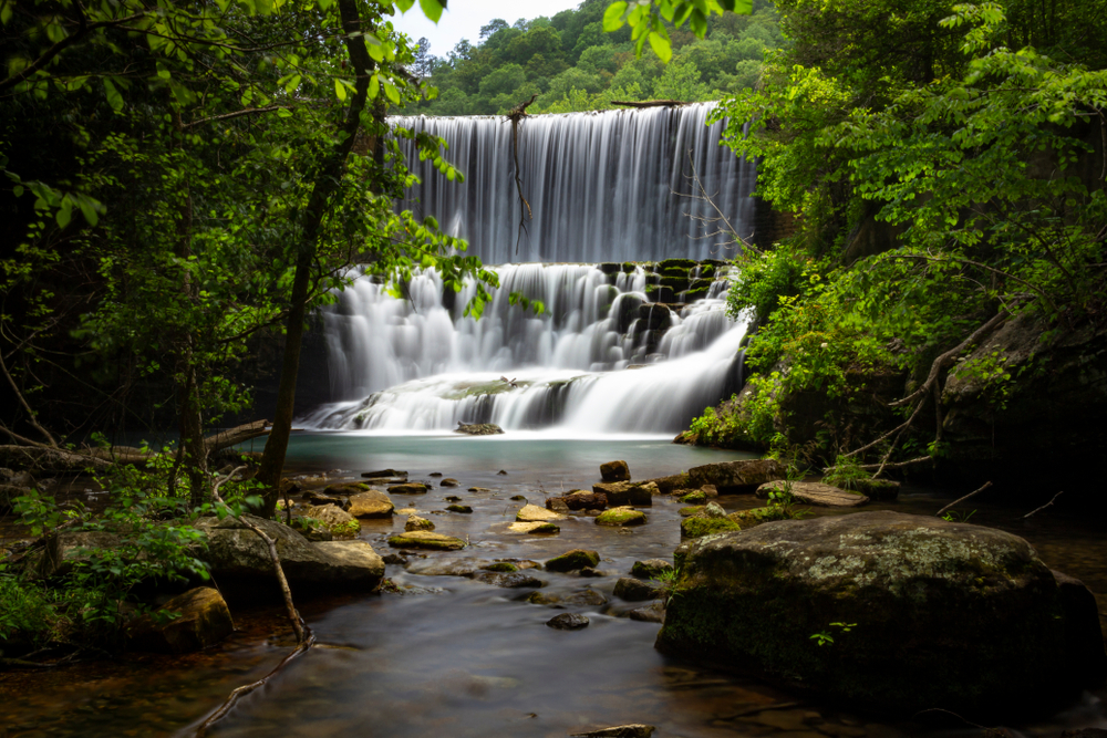waterfall surrounded by trees
